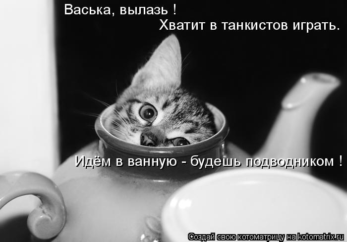 Котоматрица: Васька, вылазь ! Хватит в танкистов играть. Идём в ванную - будешь подводником !