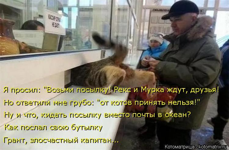 """Котоматрица: Но ответили мне грубо: """"от котов принять нельзя!"""" Я просил: """"Возьми посылку! Рекс и Мурка ждут, друзья! Ну и что, кидать посылку вместо почты в о"""