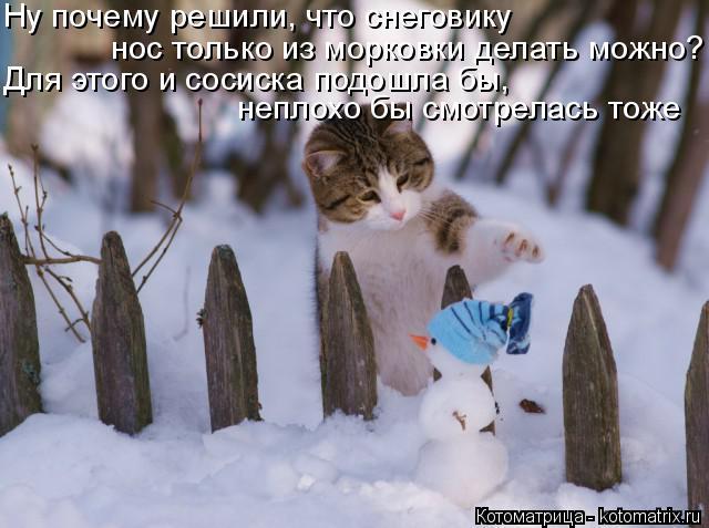 Котоматрица: Ну почему решили, что снеговику нос только из морковки делать можно? Для этого и сосиска подошла бы, неплохо бы смотрелась тоже
