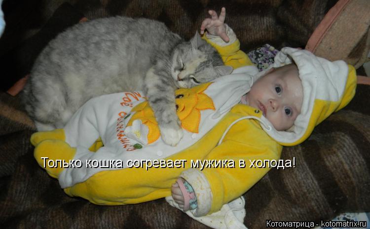 Котоматрица: Только кошка согревает мужика в холода!