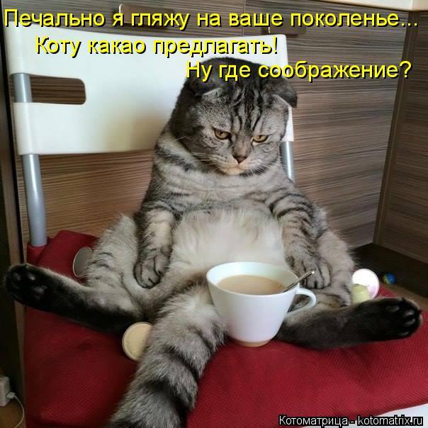 Котоматрица: Печально я гляжу на ваше поколенье... Коту какао предлагать! Ну где соображение?