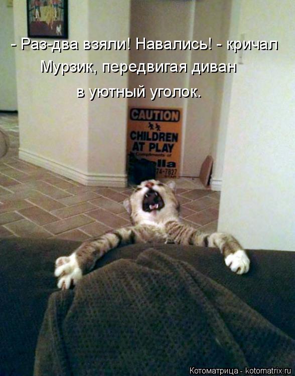Котоматрица: - Раз-два взяли! Навались! - кричал  Мурзик, передвигая диван  в уютный уголок.