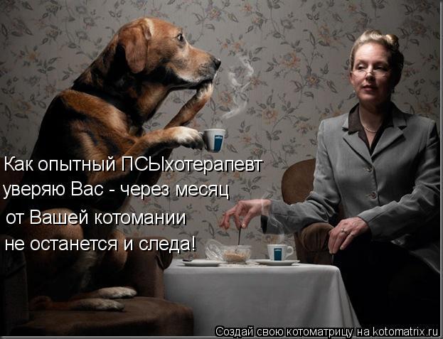 Котоматрица: Как опытный ПСЫхотерапевт уверяю Вас - через месяц  от Вашей котомании не останется и следа!