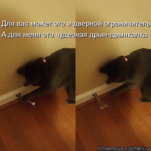 Котоматрица: Для вас может это и дверной ограничитель А для меня это чудесная дрын-дрынкалка