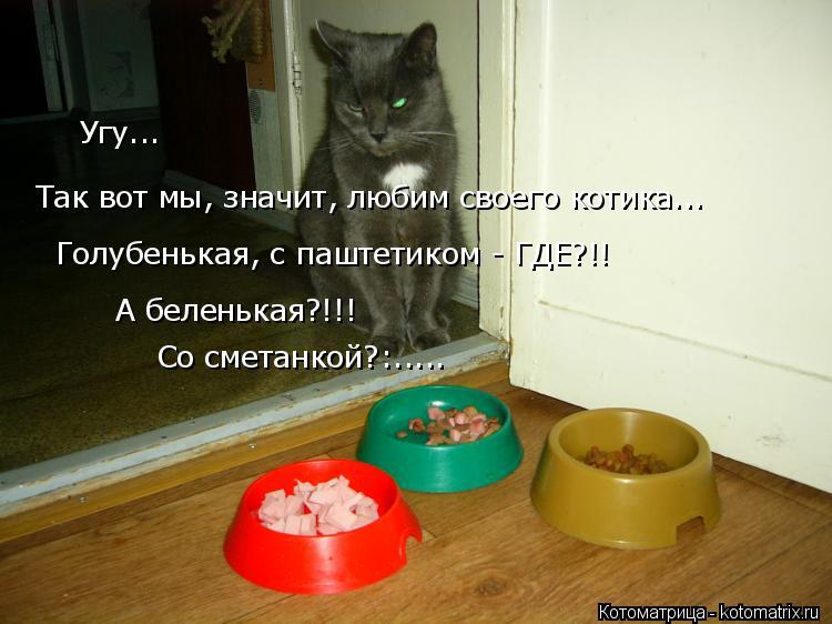 Котоматрица: Угу... Так вот мы, значит, любим своего котика... Голубенькая, с паштетиком - ГДЕ?!! А беленькая?!!! Со сметанкой?:.....