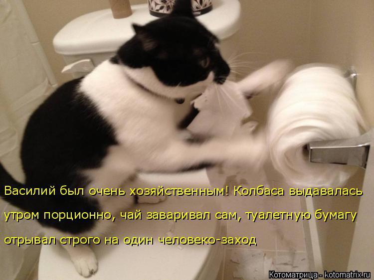 Котоматрица: Василий был очень хозяйственным! Колбаса выдавалась утром порционно, чай заваривал сам, туалетную бумагу  отрывал строго на один человеко-