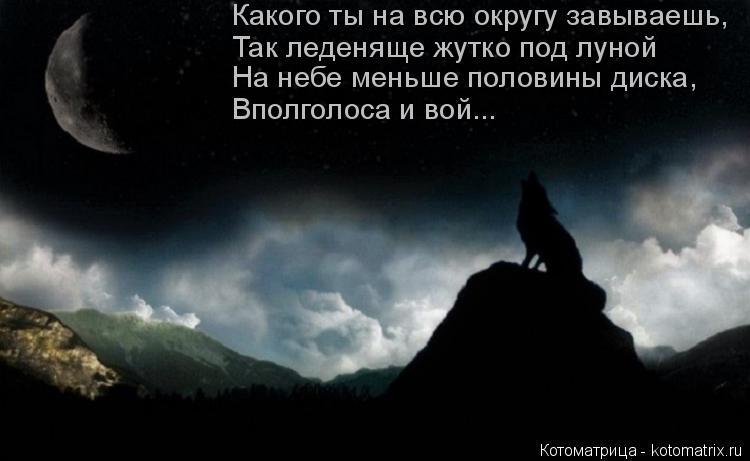 Котоматрица: Какого ты на всю округу завываешь, Так леденяще жутко под луной На небе меньше половины диска, Вполголоса и вой...