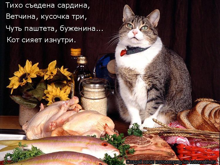 Котоматрица: Тихо съедена сардина, Ветчина, кусочка три,  Чуть паштета, буженина... Кот сияет изнутри.