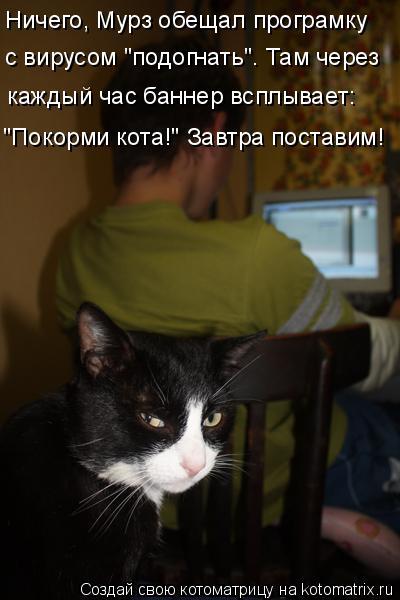 """Котоматрица: Ничего, Мурз обещал програмку с вирусом """"подогнать"""". Там через каждый час баннер всплывает: """"Покорми кота!"""" Завтра поставим!"""