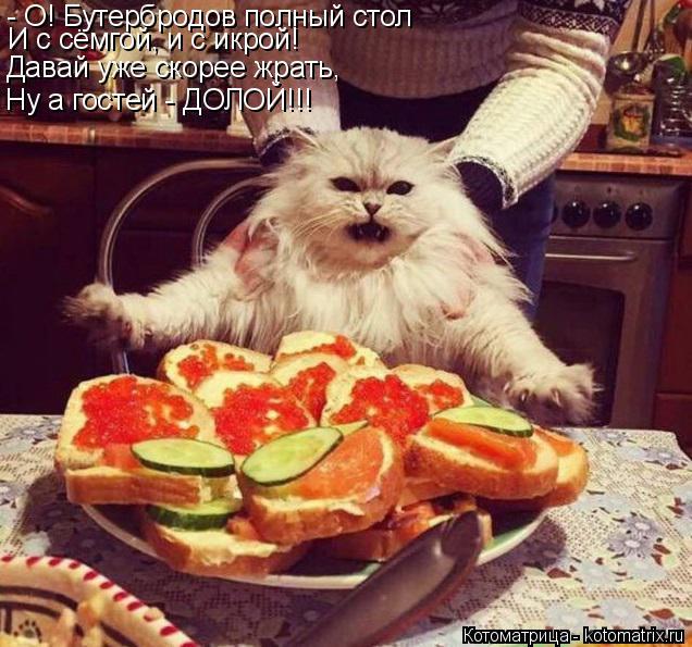 Котоматрица: - О! Бутербродов полный стол И с сёмгой, и с икрой! Давай уже скорее жрать, Ну а гостей - ДОЛОЙ!!!