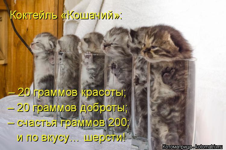 Котоматрица: Коктейль «Кошачий»: – 20 граммов красоты; – 20 граммов доброты; – счастья граммов 200; и по вкусу… шерсти!