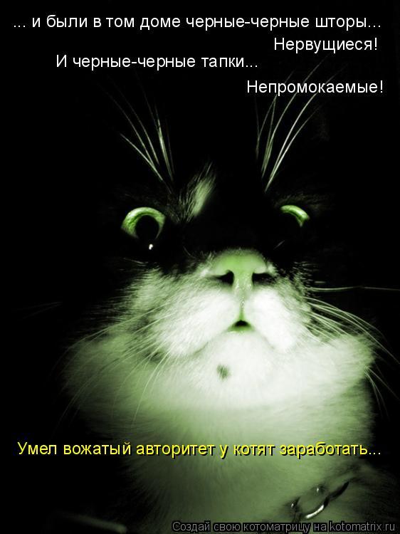 Котоматрица: ... и были в том доме черные-черные шторы...  Нервущиеся! И черные-черные тапки... Непромокаемые! Умел вожатый авторитет у котят заработать...