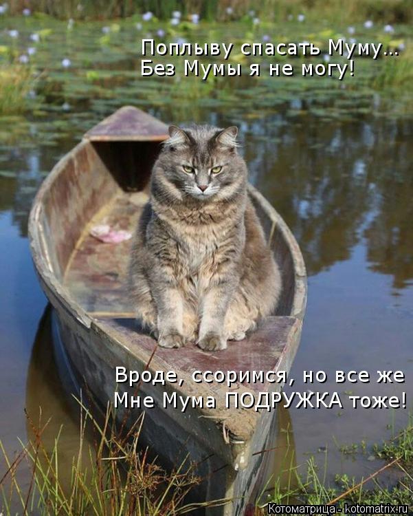 Котоматрица: Поплыву спасать Муму… Без Мумы я не могу! Вроде, ссоримся, но все же Мне Мума ПОДРУЖКА тоже!