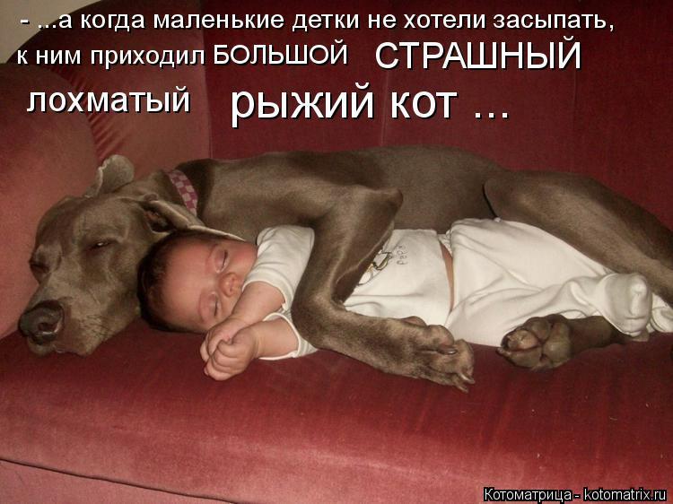 Котоматрица: - ...а когда маленькие детки не хотели засыпать, к ним приходил БОЛЬШОЙ  СТРАШНЫЙ лохматый рыжий кот ...