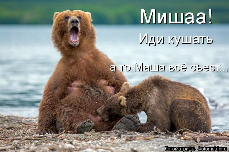 Котоматрица: Мишаа! Иди кушать а то Маша всё съест...