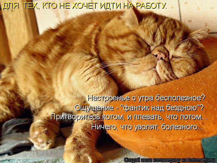 """Котоматрица: ДЛЯ  ТЕХ, КТО НЕ ХОЧЕТ ИДТИ НА РАБОТУ. Настроенье с утра бесполезное? Ощущение - """"фантик над бездною""""? Притворитесь котом, и плевать, что потом."""