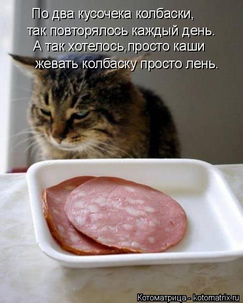 Котоматрица: По два кусочека колбаски, так повторялось каждый день. А так хотелось,просто каши жевать колбаску просто лень.