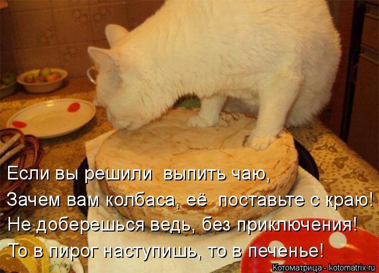 Котоматрица: Если вы решили  выпить чаю, Зачем вам колбаса, её  поставьте с краю! Не доберешься ведь, без приключения! То в пирог наступишь, то в печенье!