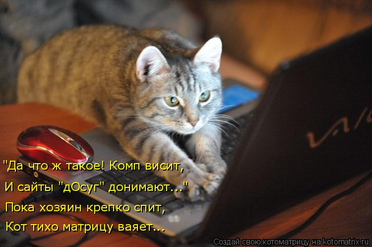 """Котоматрица: """"Да что ж такое! Комп висит, И сайты """"дОсуг"""" донимают..."""" Пока хозяин крепко спит, Кот тихо матрицу ваяет..."""