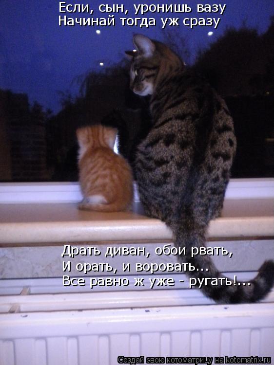 Котоматрица: Если, сын, уронишь вазу Начинай тогда уж сразу Драть диван, обои рвать, И орать, и воровать... Все равно ж уже - ругать!...