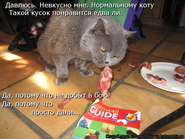 Котоматрица: Давлюсь. Невкусно мне. Нормальному коту Такой кусок понравится едва ли. Да, потому что не добыт в бою! Да, потому что просто дали...