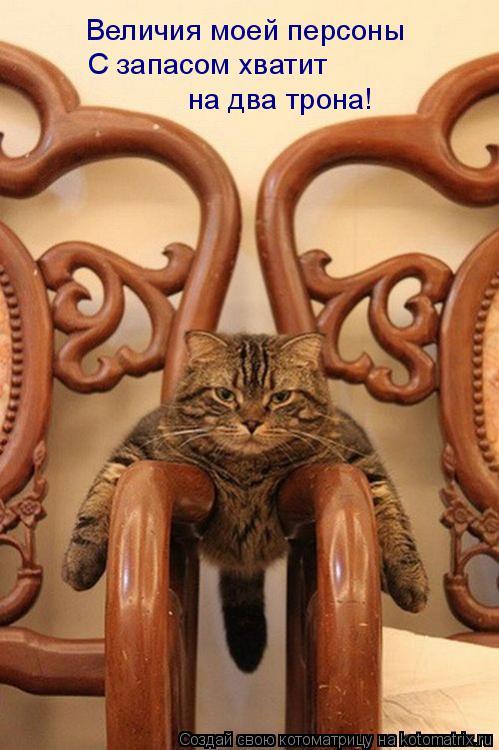 Котоматрица: Величия моей персоны С запасом хватит  на два трона!
