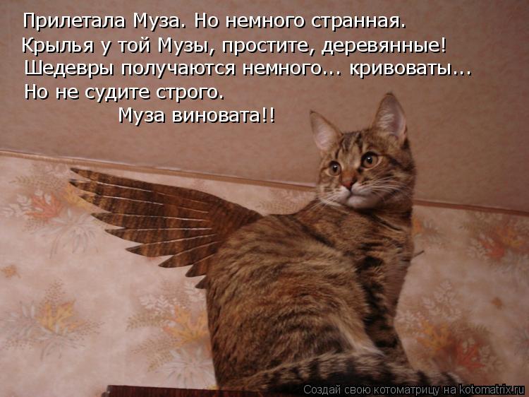 Котоматрица: Прилетала Муза. Но немного странная. Крылья у той Музы, простите, деревянные! Шедевры получаются немного... кривоваты... Но не судите строго. М