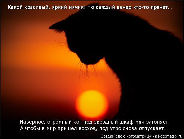 Котоматрица: Какой красивый, яркий мячик! Но каждый вечер кто-то прячет… Наверное, огромный кот под звездный шкаф мяч загоняет. А чтобы в мир пришел восх