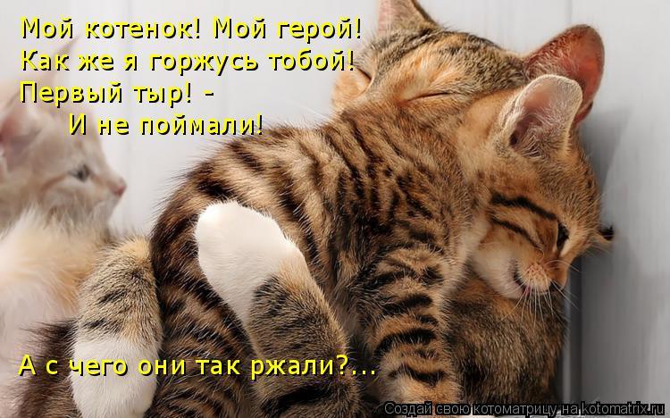 Котоматрица: Мой котенок! Мой герой! Как же я горжусь тобой! Первый тыр! - И не поймали! А с чего они так ржали?...