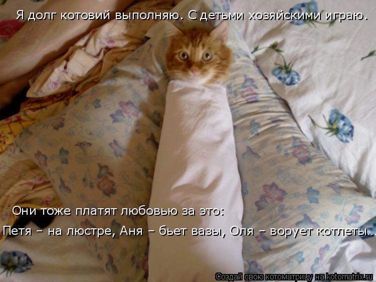 Котоматрица: Я долг котовий выполняю. С детьми хозяйскими играю. Они тоже платят любовью за это: Петя – на люстре, Аня – бьет вазы, Оля – ворует котлеты…