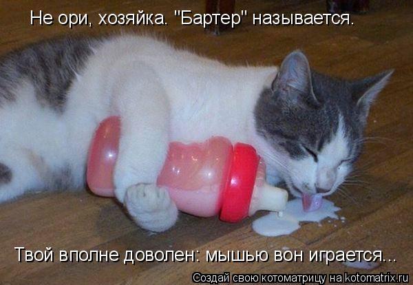 """Котоматрица: Не ори, хозяйка. """"Бартер"""" называется. Твой вполне доволен: мышью вон играется..."""