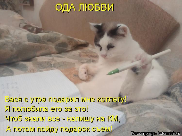 Котоматрица: ОДА ЛЮБВИ Вася с утра подарил мне котлету! Я полюбила его за это! Чтоб знали все - напишу на КМ, А потом пойду подарок съем!
