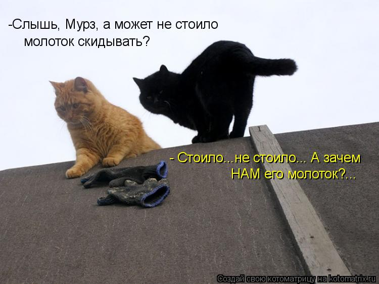 Котоматрица: -Слышь, Мурз, а может не стоило молоток скидывать? - Стоило...не стоило... А зачем НАМ его молоток?...