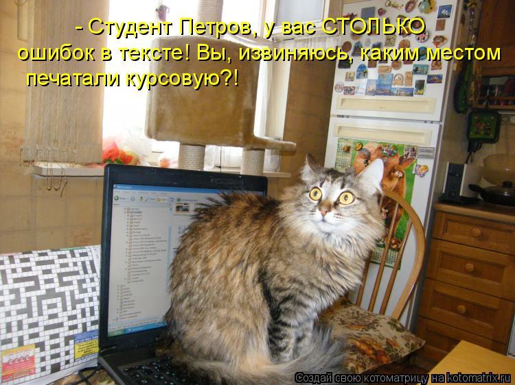 Котоматрица: - Студент Петров, у вас СТОЛЬКО  ошибок в тексте! Вы, извиняюсь, каким местом печатали курсовую?!