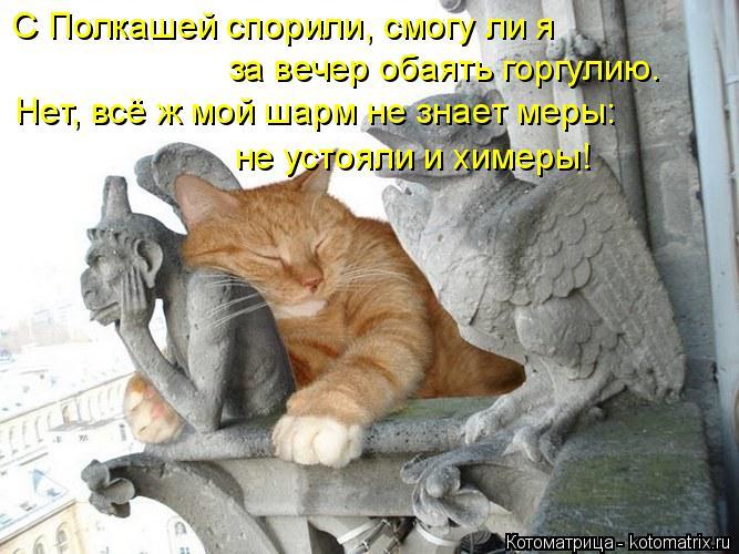 Котоматрица: С Полкашей спорили, смогу ли я  за вечер обаять горгулию. Нет, всё ж мой шарм не знает меры: не устояли и химеры!