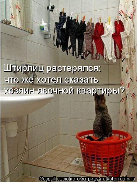 Котоматрица: Штирлиц растерялся: что же хотел сказать хозяин явочной квартиры?