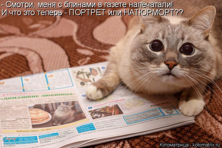 Котоматрица: - Смотри, меня с блинами в газете напечатали! И что это теперь - ПОРТРЕТ или НАТЮРМОРТ??