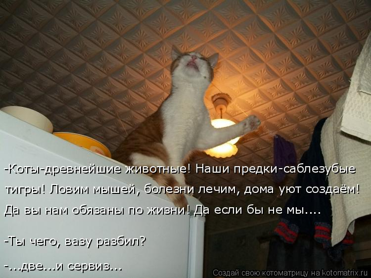 Котоматрица: -Коты-древнейшие животные! Наши предки-саблезубые  -Ты чего, вазу разбил? Да вы нам обязаны по жизни! Да если бы не мы.... тигры! Ловим мышей, бол