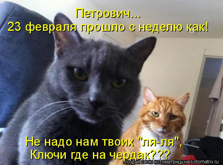 "Котоматрица: 23 февраля прошло с неделю как! Петрович... Не надо нам твоих ""ля-ля"", Ключи где на чердак???"