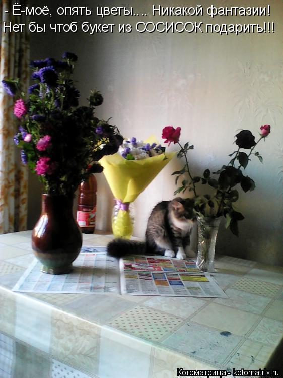 Котоматрица: - Ё-моё, опять цветы.... Никакой фантазии! Нет бы чтоб букет из СОСИСОК подарить!!!