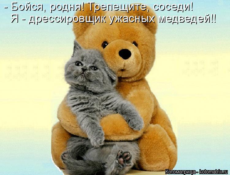 Котоматрица: - Бойся, родня! Трепещите, соседи! Я - дрессировщик ужасных медведей!!