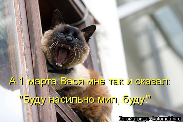 """Котоматрица: А 1 марта Вася мне так и сказал:  """"Буду насильно мил, буду!"""""""