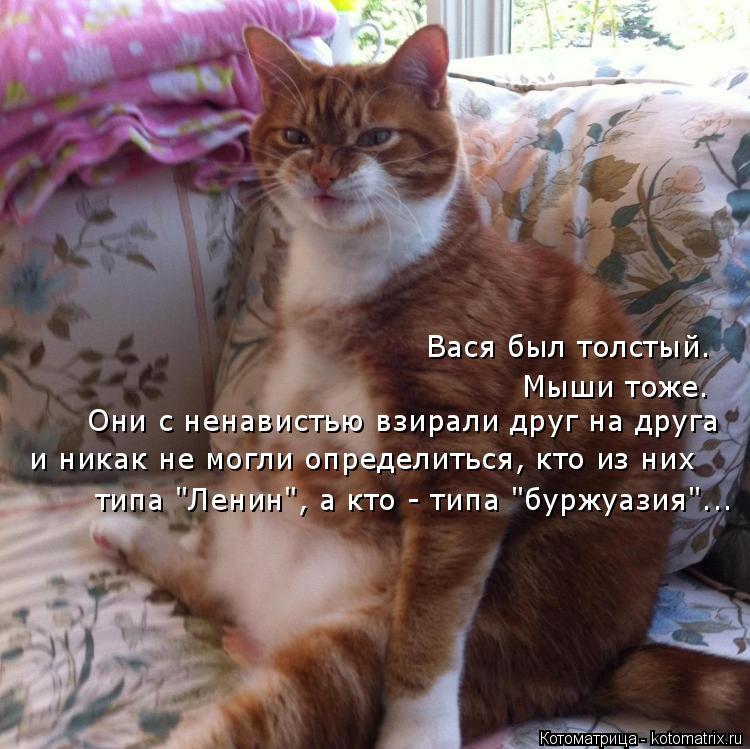 """Котоматрица: Вася был толстый. Мыши тоже. Они с ненавистью взирали друг на друга и никак не могли определиться, кто из них типа """"Ленин"""", а кто - типа """"буржуа"""