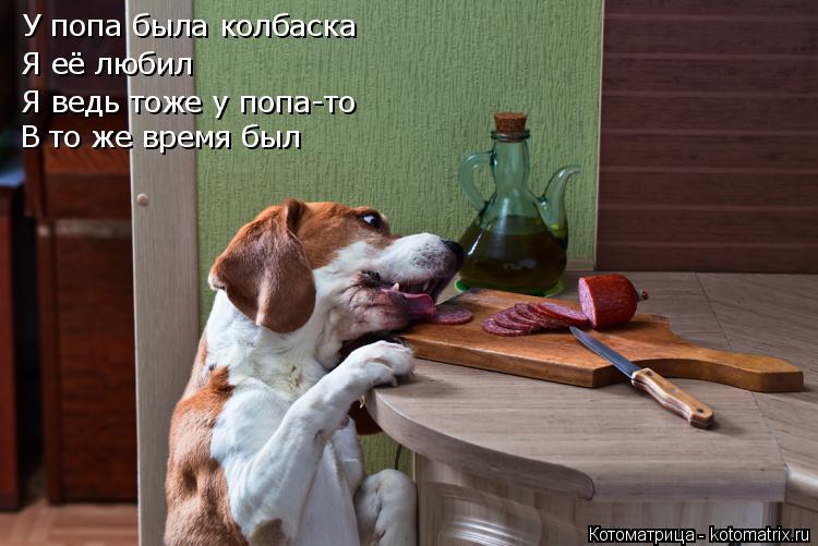 Котоматрица: У попа была колбаска Я её любил Я ведь тоже у попа-то В то же время был