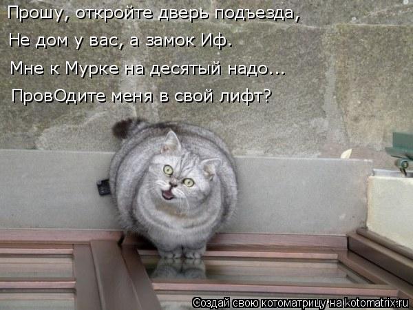 Котоматрица: Прошу, откройте дверь подъезда, Не дом у вас, а замок Иф. Мне к Мурке на десятый надо... ПровОдите меня в свой лифт?