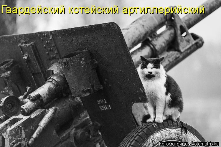 Котоматрица: Гвардейский котейский артиллерийский