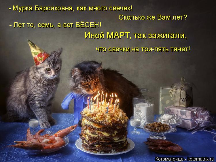 Котоматрица: Сколько же Вам лет? - Мурка Барсиковна, как много свечек! Иной МАРТ, так зажигали,  что свечки на три-пять тянет! - Лет то, семь, а вот ВЁСЕН!