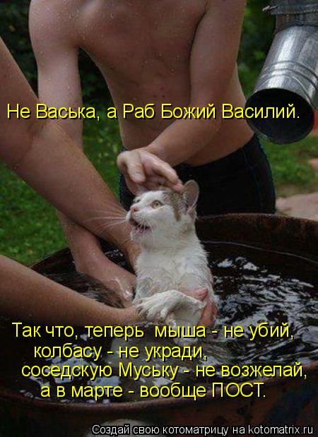 Котоматрица: Не Васька, а Раб Божий Василий. Так что, теперь  мыша - не убий, колбасу - не укради, соседскую Муську - не возжелай, а в марте - вообще ПОСТ.