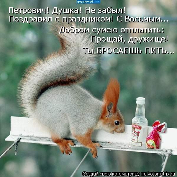 Котоматрица: Петрович! Душка! Не забыл! Поздравил с праздником! С Восьмым... Добром сумею отплатить: Прощай, дружище! Ты БРОСАЕШЬ ПИТЬ...