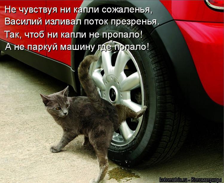 Котоматрица: Не чувствуя ни капли сожаленья, Василий изливал поток презренья. Так, чтоб ни капли не пропало! А не паркуй машину где попало!